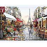 N+A Puzzles para Adultos 1000 Piezas Puzzle Paisaje Puzzle París Romántico Puzzle para Niños Descompresión y Regalo