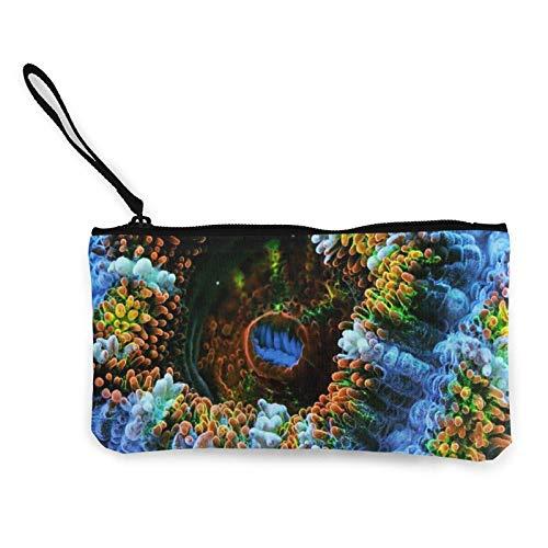Monedero de lona de coral, monedero con cremallera, monedero para mujeres y niñas