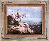 8x10 Hobble Creek Western Barnwood Picture Frame with Barbed Wire
