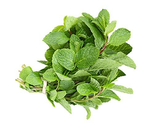 Mint Leaves / Fresh - 0.75oz bag