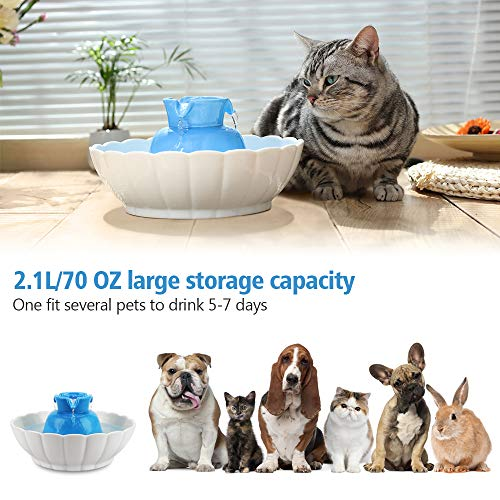 iPettie Tritone Ceramic Pet Drinking Fountain丨Ultra Quiet, Way Better Than Plastic丨Water Fountains for Cats and Dogs Pet Water Dispenser with Replacement Filters and Foam (Blue)