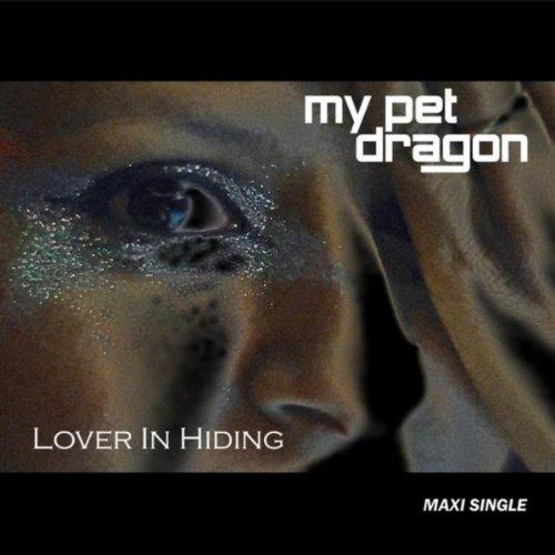 Lover In Hiding - Maxi Single