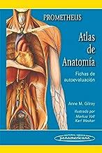 Prometheus Atlas de anatomia / Anatomy Flash Cards-Anatomy on the Go: Fichas de autoevaluacion / Self-evaluation Sheets (Spanish Edition)
