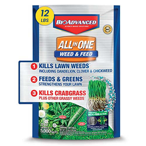 BioAdvanced 100532518 Bayer All-in-One Weed & Feed with MicroFeed Action, 12 lb Weed and Feed,...