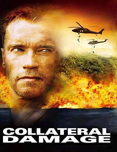 Collateral Damage (English Edition)