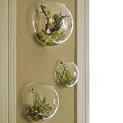 Idea Regalo - Set di 3 vasi in vetro a parete, terrari a parete a bolle, terrari in vetro soffiato, fioriere per interni, portatori di piante d'aria, fioriere per piante grasse (senza piante)