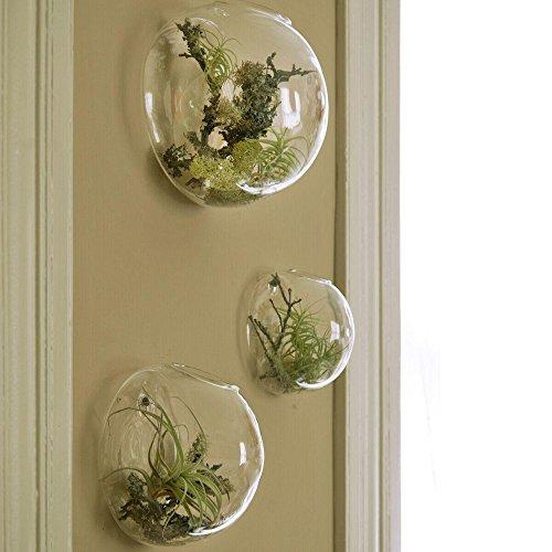 Set di 3 vasi in vetro a parete, terrari a parete a bolle, terrari in vetro soffiato, fioriere per interni, portatori di piante d'aria, fioriere per piante grasse (senza piante)