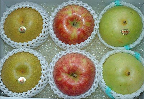 豊水梨 二十世紀梨 サンつがる 大玉約2キロ6個前後入 贈答向け 秀品 詰め合わせ ギフト フルーツギフト 豊水 梨 和梨 20世紀梨 さんつがる りんご リンゴ 林檎