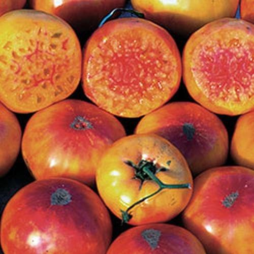 Ungarische Hillbilly Kartoffeltomate, seltene Form, eigener Anbau 20 Samen, von unserer ungarischen Farm samenfest, nur organische Dünger, KEINE Pesztizide, BIO hu-öko-01