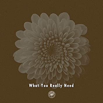 What You Really Need (feat. Miraa May)