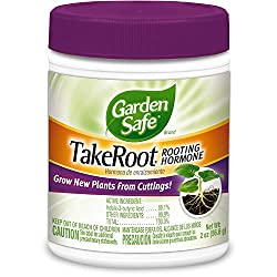 Rooting hormone powder.