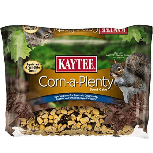 Kaytee Corn A Plenty Cake Pet Food, 2.5-Pound