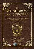 Le Chaudron de la Sorcière - L'art, les traditions et la magie des récipients rituels
