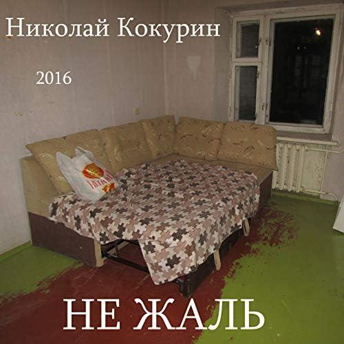 Николай Кокурин