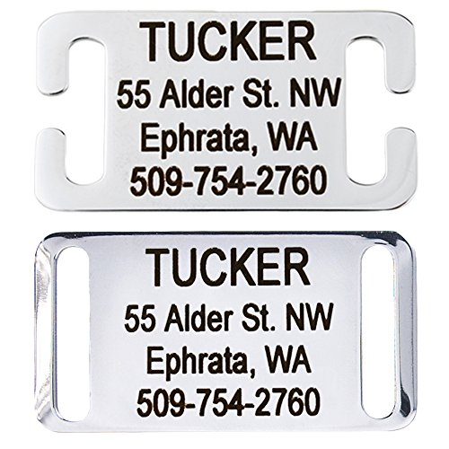GoTags Slide-On Pet ID Tags, Personalized Dog and Cat Tags, Silent, No Noise Collar Tags Made of Stainless Steel, Custom Engraved, (Solid for Belt Buckle Collars)