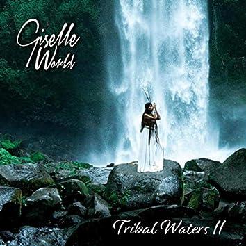 Tribal Waters II