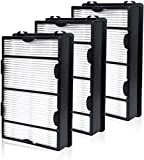 HAPF600 True HEPA Filter 3 Pack Compatiable with Holmes B Filter - Replace for HAPF600D HAP615 HAP625 HAP650 HAP675RC HAP725 HAP750 HAP1625 HAP1650 HAP1725 HAP1750 Air Purifiers
