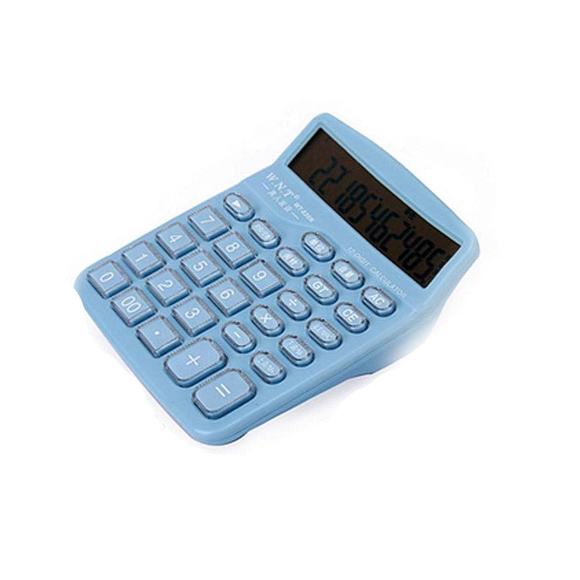 年次追跡逆MEIYUFUZHUANG-A 電卓、デュアル電源、12ビットワイドスクリーンディスプレイ、ボイスソーラー電卓、日々の基本的なオフィス用ハンドヘルド 会計 (Color : C)