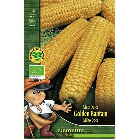 Semillas ecológicas de Maiz Dulce Golden Bantam