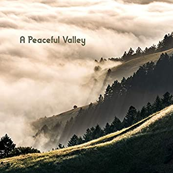 A Peaceful Valley