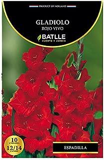 Bulbos Batlle Gladiolo rojo vivo