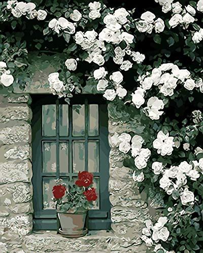 DJHYT Nach Zahlen Leinwand nach Zahlen neuerscheinungen Blumen Landschaft Vintage Fenster-Wood Frame-(40x50cm)