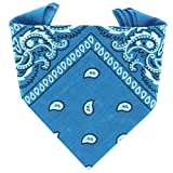 ...KARL LOVEN - Bandana 100% algodón - Paisley Azur - Pañuelo para el cuello, cabeza bufanda para hombre, mujer y niño muñeca Pulsera motociclista Deportiva