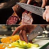 Zelite Infinity Kochmesser 20 cm - Küchenmesser aus Japanischem AUS-10 Super-Edelstahl– Schärfstes Professionelles Gyuto Damastmesser - für Zuhause oder Restaurantküche - Damastmesser Küchenmesser - 3