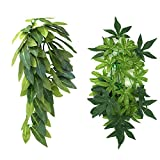 2Pack Reptile Plants Hanging Silk Terrarium Plants with Suction Cup for Bearded Dragons,Lizards,Geckos,Snake,Hermit Crab Tank Habitat Decorations,Small Size,12 inches Green