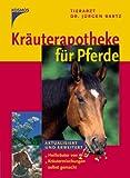 Kräuterapotheke für Pferde: Heilkräuter von A-Z. Kräutermischungen selbst gemacht.