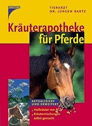Anis Heilkräuter für Pferde