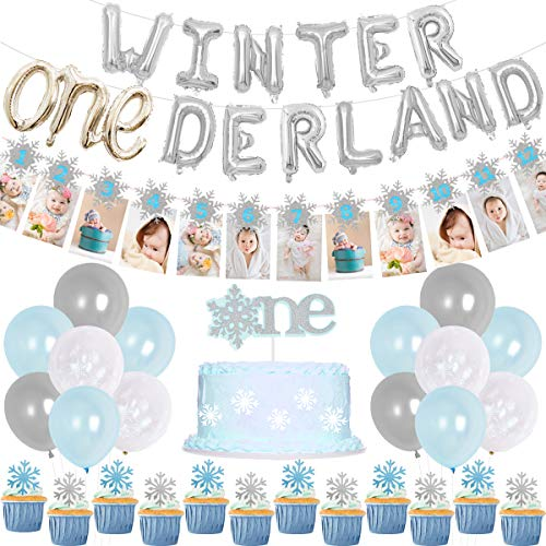 Winter Onederland Birthday Decorations, Winter 1st Birthday Blue Onederland Balloons Snowflake Photo Banner for First Birthday Party Supplies