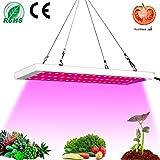 Favrison 300W LED Plant Light Grow Lamp Full Spectrum LED Grow Lights for Indoor Plants, Seeding, Breeding,...