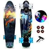 Mini Cruiser Skateboards for Beginners, Classic Skating Board 22 Inch for Kids 7-10, Funny Cool Skateboards with LED Light Up Wheels (Cool Board, 22')