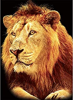 Best lion king frame by frame Reviews