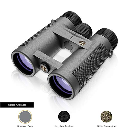 Leupold BX-4 Pro Guide HD 10x42mm Binocular, Shadow Gray (172666)