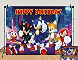 Night View Sonic The Hedgehog Backdrops Supercity Sonic Kids Birthday Banner Decor Photography Background Baby Shower Photo Studio Props Cake Table Supplies 5x3ft