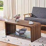 GOLDFAN Couchtisch Holz Kaffetisch Glas Moderner TV Tisch für Wohnzimmer Schlafzimmer, Braun