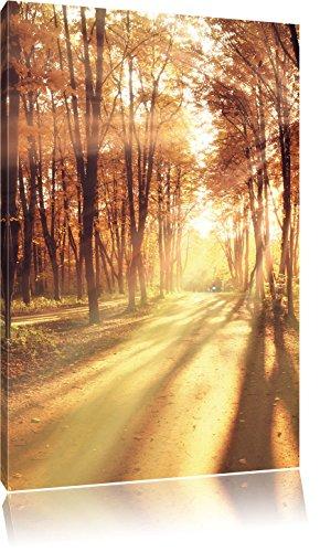 Baumallee im Herbst, Format: 120x80 auf Leinwand, XXL riesige Bilder fertig gerahmt mit Keilrahmen, Kunstdruck auf Wandbild mit Rahmen, günstiger als Gemälde oder Ölbild, kein Poster oder Plakat
