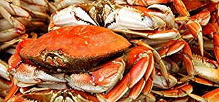 Best frozen dungeness crab Reviews