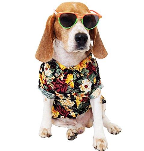 Runncha Shop Sommer Camp, Pet Hund Shirts, Kleidung, Kostüme, S, M, L, Bunt, Bekleidung, Hawaiian Styles, Bunt, Blumen Hawaiian Shirts, L, Multi Color