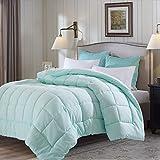 color alternative down comforter - Evolive All Season Pre Washed Soft Microfiber White Goose Down Alternative Comforter (Mint, Full/Queen)