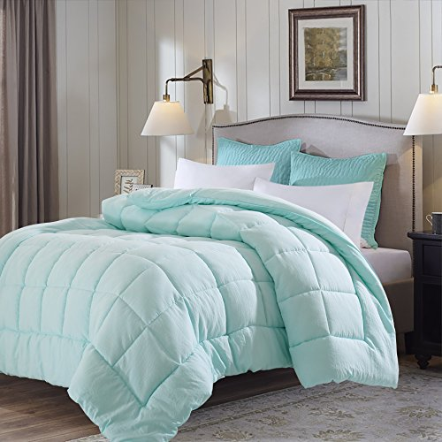 EVOLIVE All Season Pre Washed Soft Microfiber White Goose Down Alternative Comforter (Mint, King)