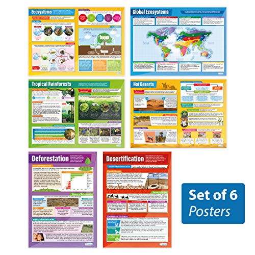 Ecosystems Posters - Set of 6   Geography Posters   Gloss Paper Measuring 33� x 23.5�   Geography Classroom Posters   Education Charts by Daydream Education