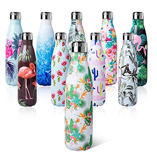 Shinemefly Water Bottle 500ml Double Wall Vacuum Insulated Stainless Steel - Leak Proof Sports Bottle - BPA Free Sports Flask Great for Work, Gym, Travel - Keeps Cold for 24 Hrs, Hot for 12 Hrs
