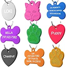 Dr. Fremont's Pet ID Tag Custom for Dog Cat Personalized   Many Shapes and Colors to Choose from   Made in USA   Strong Anodized Aluminum (Bone Blue, Large)