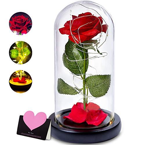 nuomaidi La Bella y La Bestia Rosa Encantada, Elegante Cúpula de Cristal con Base Pino Luces LED, Beauty and Beast Regalos Magicos Decoración para Día de San Valentín Aniversario Bodas