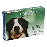 CAPSTAR 57 mg Tabletten f.große Hunde 6 St Tabletten