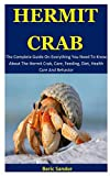 Hermit Crab: The Complete Guide On Everything You...