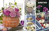 Wohn- und Tischdeko mit Kürbissen: Elegant, dekorativ, selbst gemacht - 6